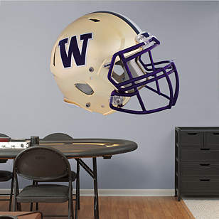 Washington Huskies Chrome Helmet